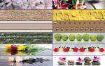 Стеновые панели для кухни для фартука: пвх, фото, пластиковые, декоративные, мдф, как крепить, видео